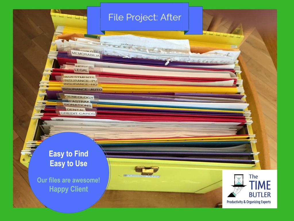 Action folders in an open-top file box.