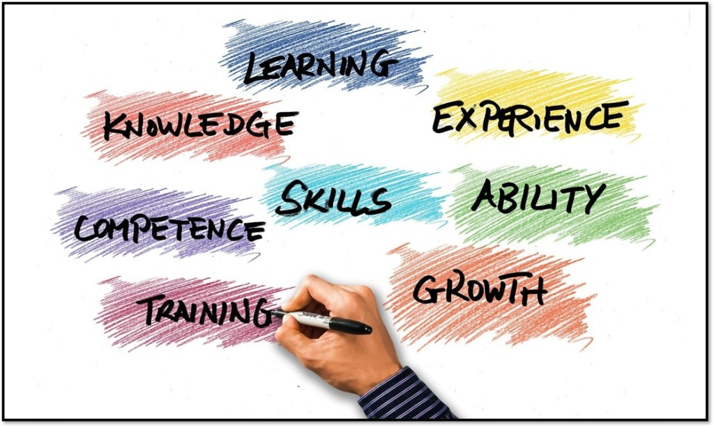 Learning, knowledge, experience, skills, competence, ability, training, growth.